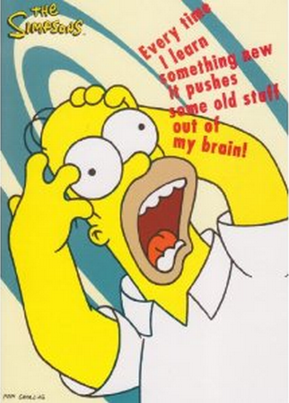 homer-learn-something-new.png
